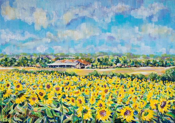SUNFLOWERS IN GASCONY by Diana Aungier - Rose