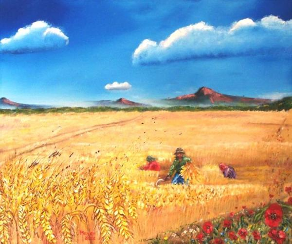 Wheat Harvest and Poppies by Meyer Van Rensburg