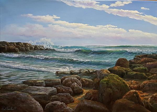 Rocky shore by Paul Narbutt