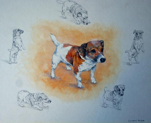 The Jack Russell by Christopher Hughes