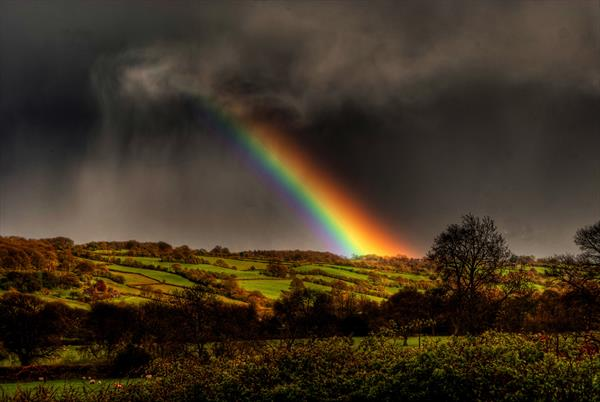Even when it is Grey, Our Valley is always Golden by Steve Lindon
