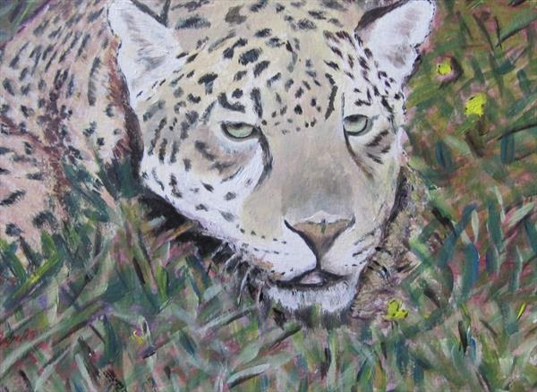 Jaguar by Janet Roberts