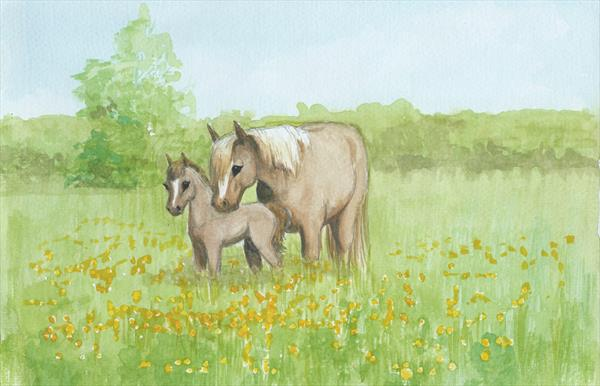 Summer Meadow (L.E. PRINT) by Maggie Frampton
