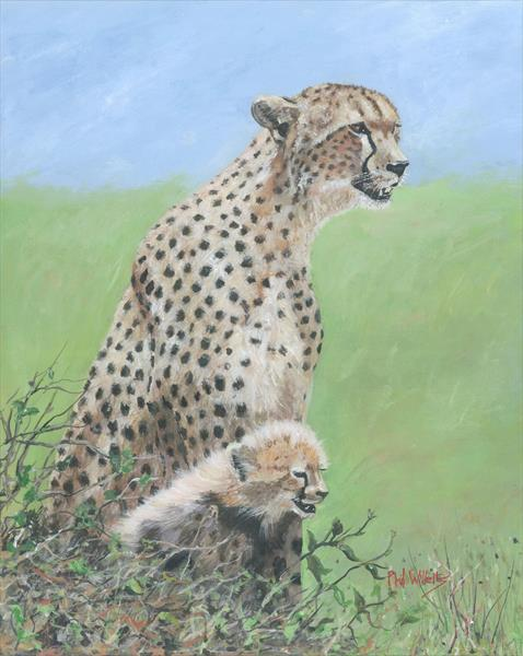 Mother Cheetah with cub by Phil Willetts