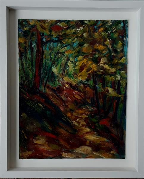 Autumn Colours in the Devils Glen, Wicklow by niki purcell