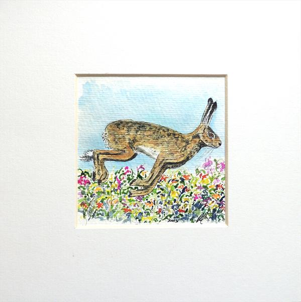 March Hare in Meadow by Elizabeth Sadler