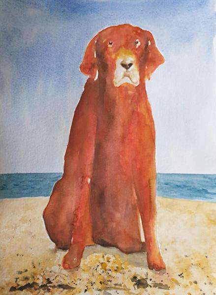 Lost dog on the beach by Teresa Tanner