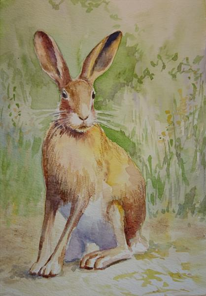 Hare rabbit on the path Winsor & Newton Professional  Artist watercolour paper A4 by Elena Haines