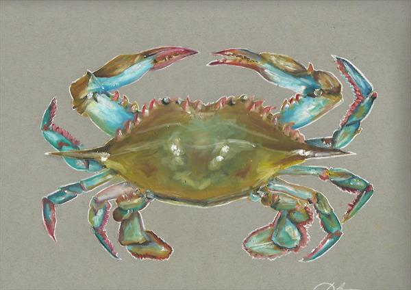 Blue Crab by Kerhys Farley