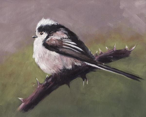Long Tailed Tit on Bramble by John Crabb