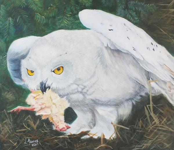 Stormbringer - Snowy owl in Acrylics by Lisa  Furness