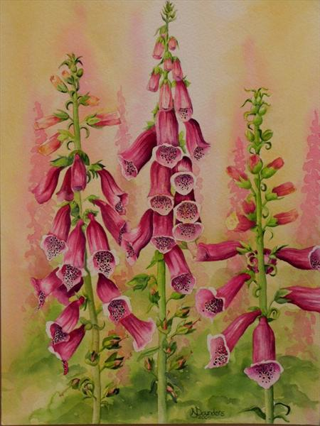 Foxgloves by Nicki Saunders