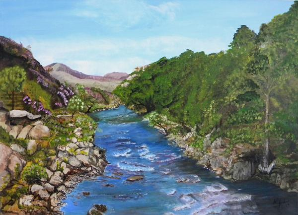 River in Wales by Alice P Jenkins