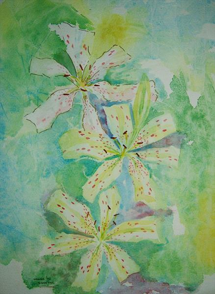Three White Lillies  by Susan Hill