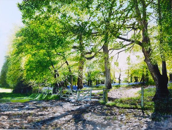 The gates to bluebell wood by Paula Oakley