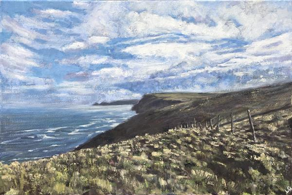 View from the South West coastal path near Boscastle by Louise Gillard
