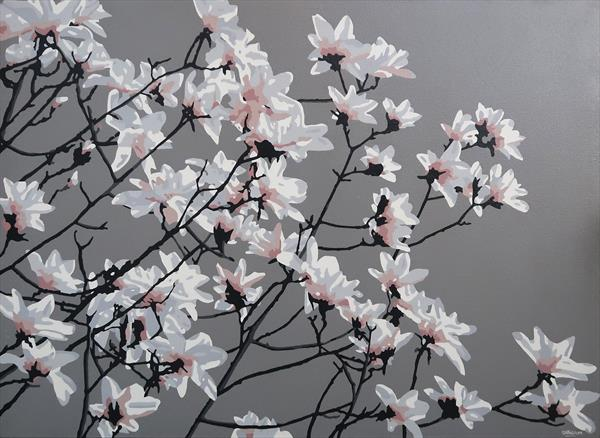 Magnolia by Simon Fairless