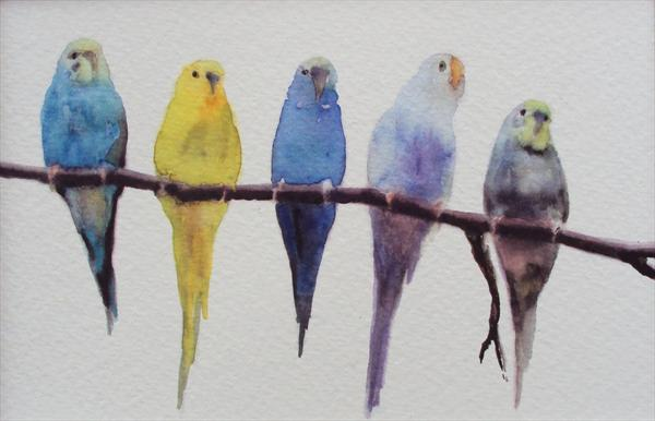 Budgies On Perch