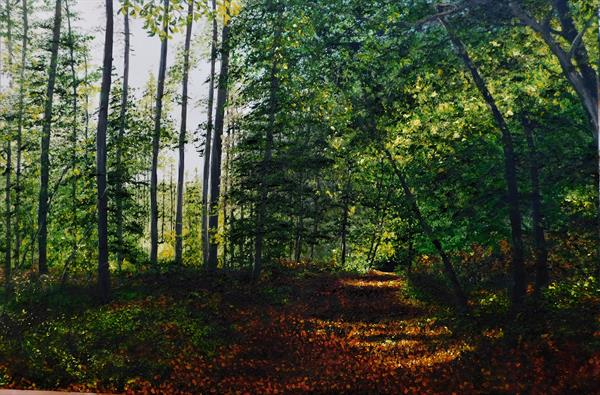 Late Summer in Delamere by Hazel Thomson