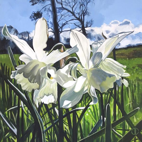 Spring Sunlight And White Narsissi by Joseph Lynch