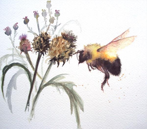 Bumble Bee Artichoke Thistle