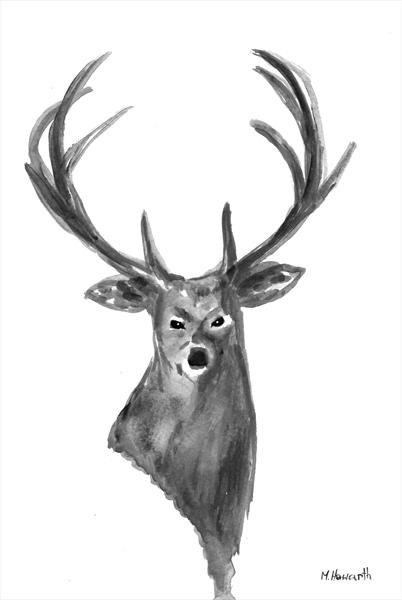 Stag head by Monika Howarth