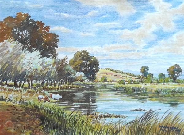 The Avon, near Salisbury by David Hannaghan