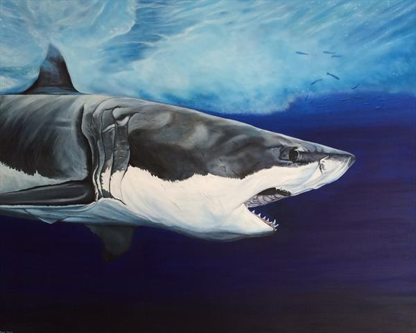 Great White Shark (Carcharodon Carcharias) by Jennie James