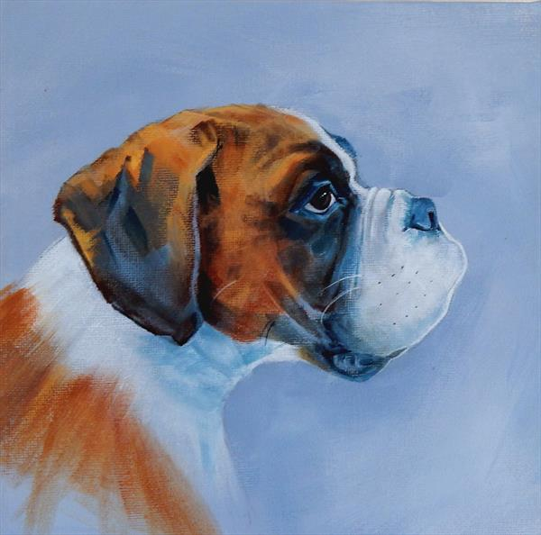 Boxer Dog by Denise Coble