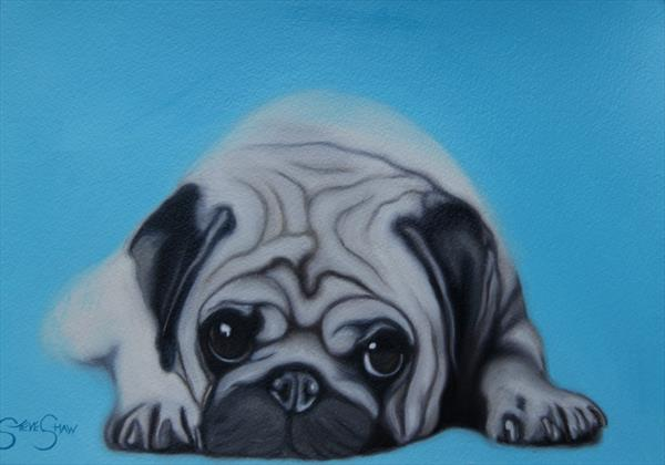 Pug Love ( oil on paper ) by Steven Shaw