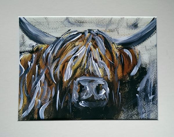 Bessy the highland coo by Damian Philliben