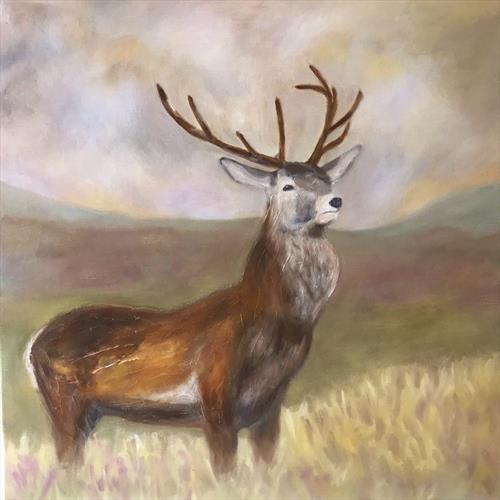 Highland Stag by Helen  Robinson