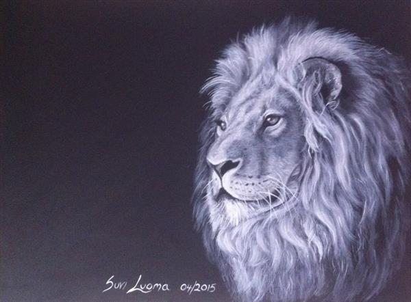 One night lion by Suvi Luoma