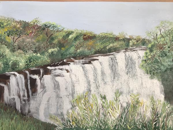 Vic Falls  by Nicole Fowler