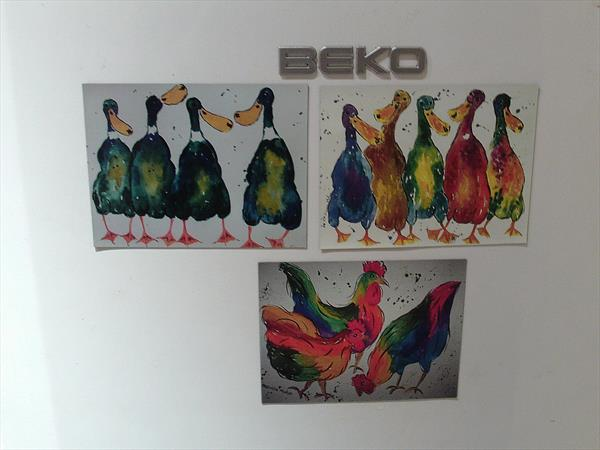 3 Fridge Magnets , Colourful Ducks and Hens by Casimira Mostyn