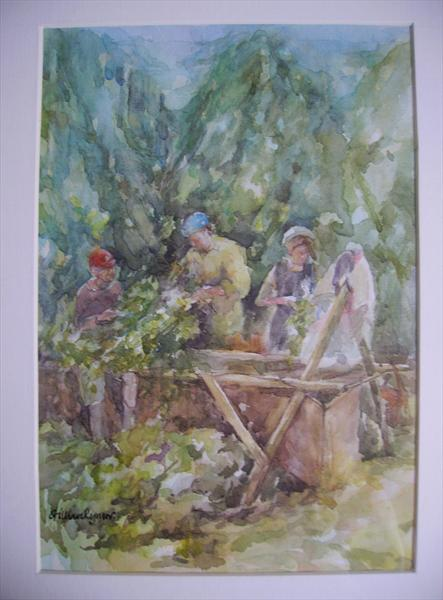 A Family Working At the Hop Bins in a Kent Hop Garden