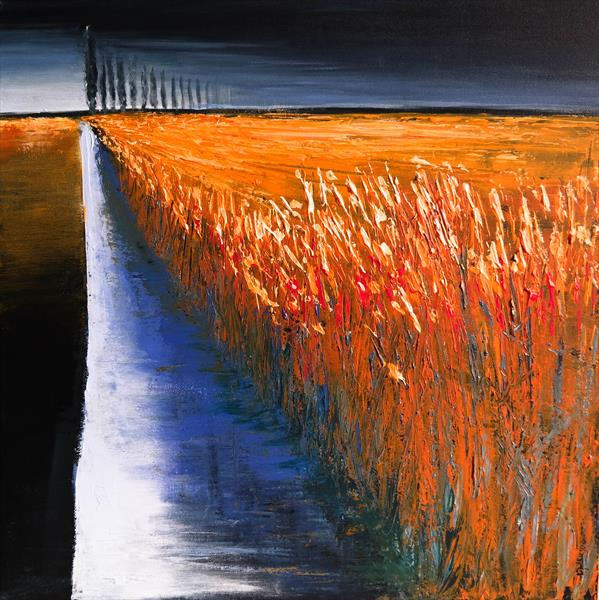 Some Perspective and the Fields - Fields and Colors Series  by Danijela  Dan