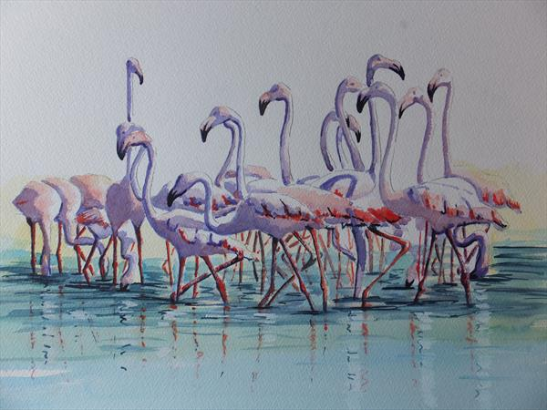 Flamingos in the Camargue by David Harmer