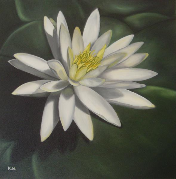Water Lily by Kerri Nathwani