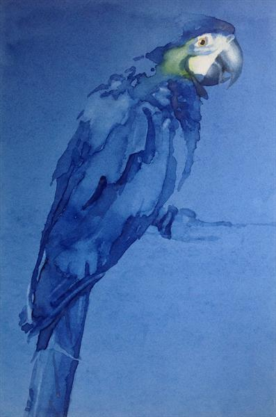 Blue Macaw by Claire Mawer