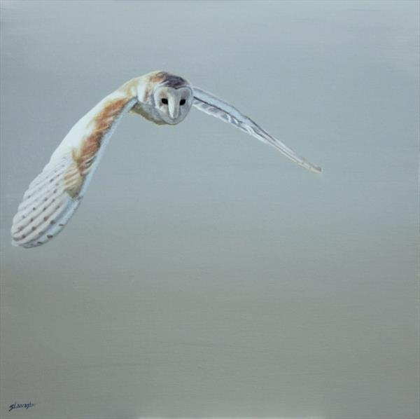 In Flight I - Framed by Sally Lancaster