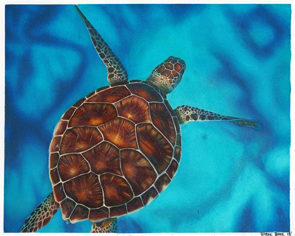 Turtle in the Sea by Rosie Baker