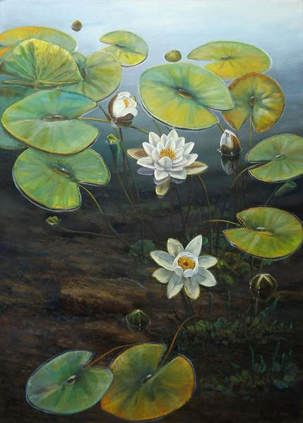 Water Lilies by Oleg Riabchuk