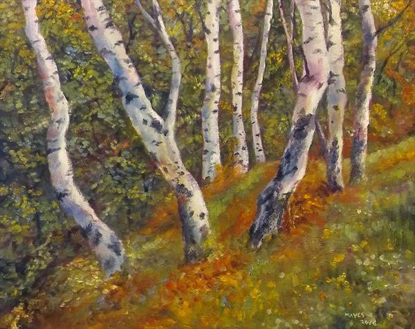 Birch Trees  by Jeremy Mayes