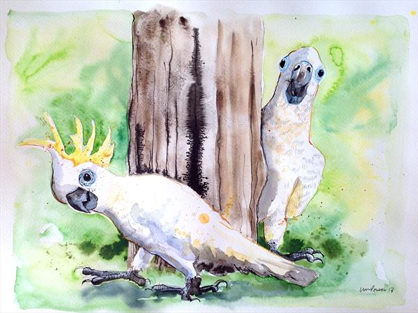 Cockatoo hide and seek - Ink and Watercolour painting by Luci Power