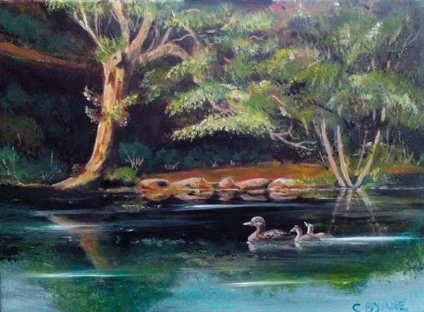 Duck pond by Chris Byrne