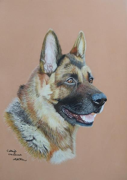 Alfie the German Shepherd Rescue