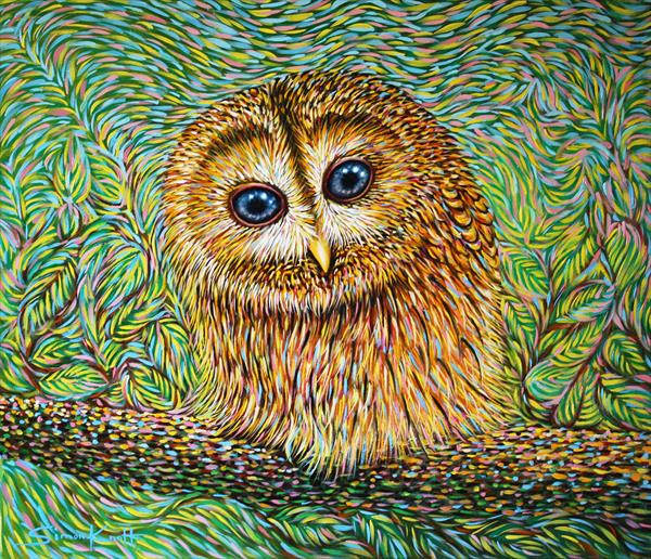 Little Tawny Owl by Simon Knott