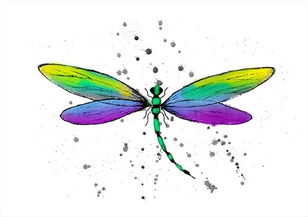 Dragonfly  by Peter Stevenson