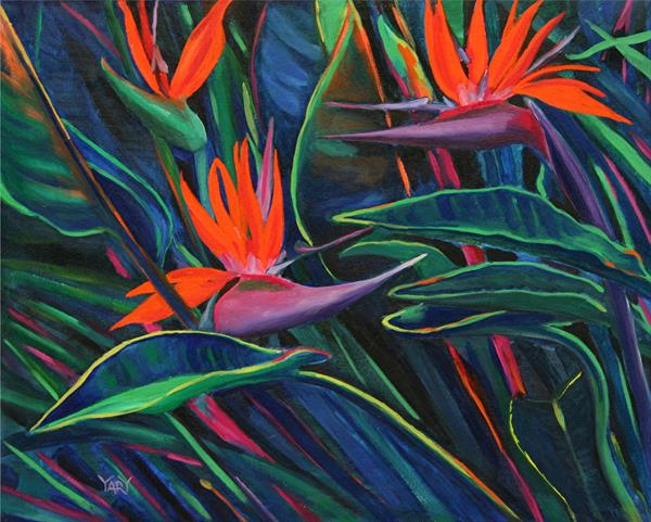 Birds of Paradise by Yary Dluhos
